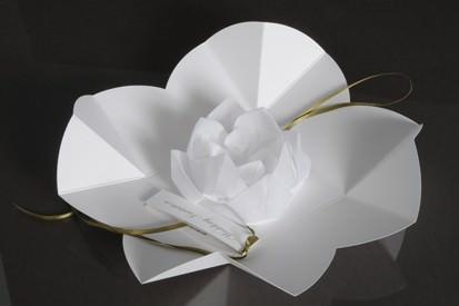 paperbird designs