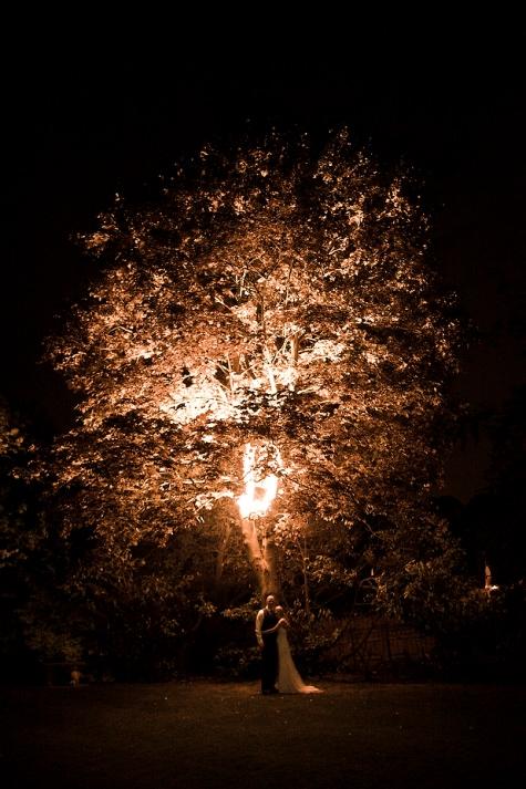 S6 Photography - Tree