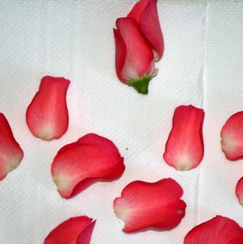 DIY rose petal confetii