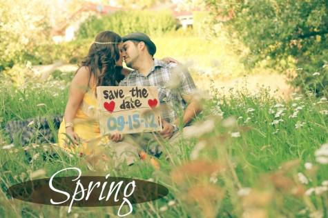 4 seasons engagement shoot