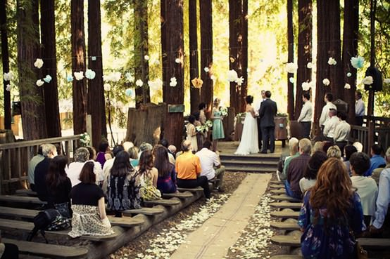 Eco friendly weddings