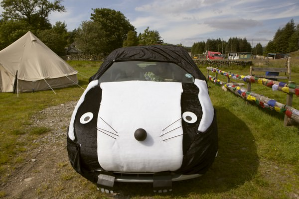 wedding car dressed as a badger
