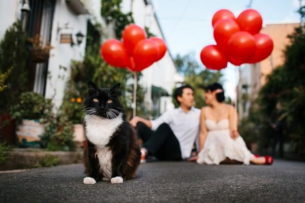 May & Kelvin's Sydney engagement shoot in Cat Alley