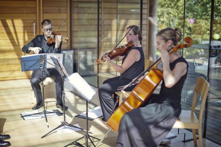 Bridgewater String Trio