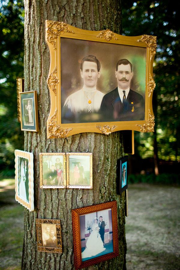 old wedding photos framed on a tree trunk