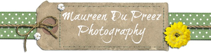 A Show and Tell with Maureen Du Preez Photography