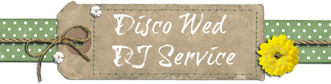disco wed - DJ service