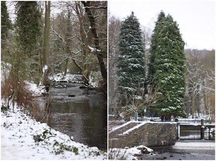 A Winter Walk in the Snow