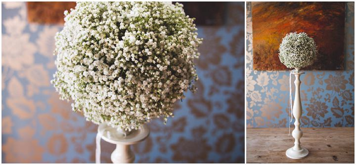 gypsophila topiary campbellsflowers