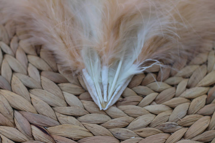 Feather and bead headdress (4)