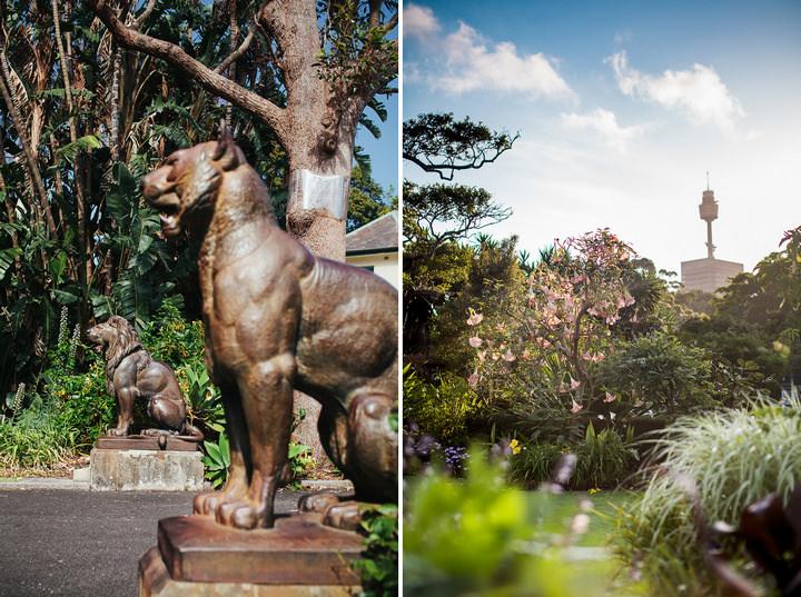 Alice Dave's Royal Botanical Gardens Wedding, Sydney