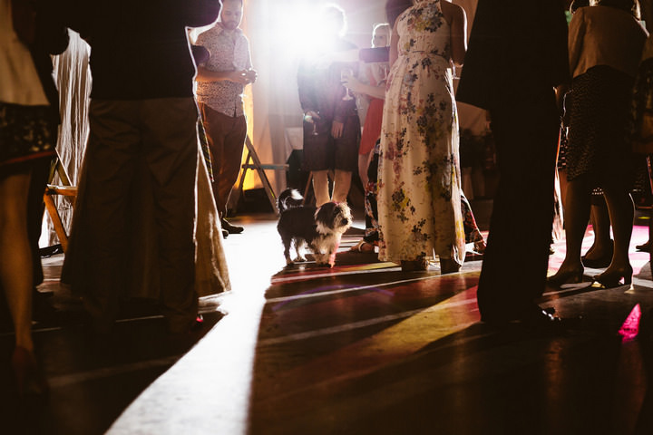 49 Handmade Wedding in The Woods Complete with Ferret Racing