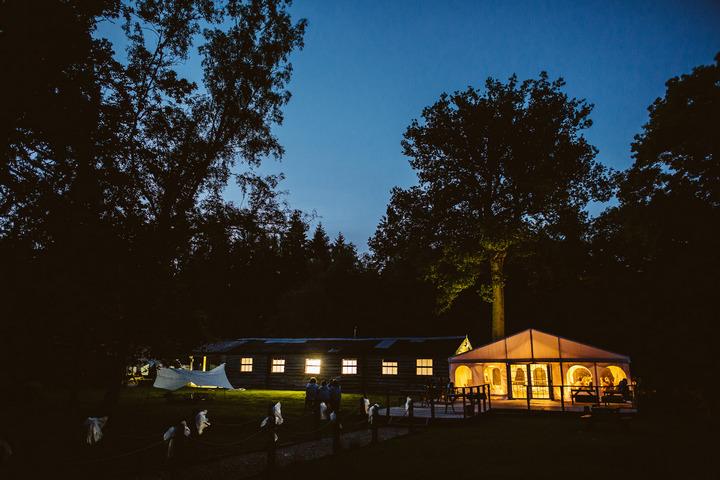 50 Handmade Wedding in The Woods Complete with Ferret Racing