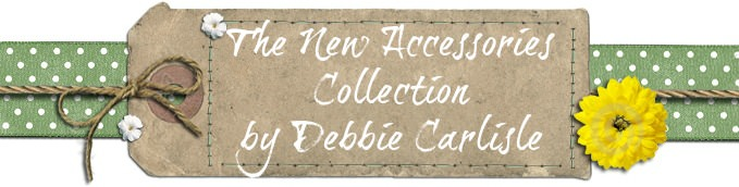 Accessories Collection by Debbie Carlisle