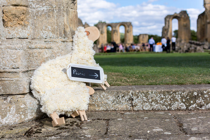 18 Yorkshire Picnic Wedding at Byland Abbey