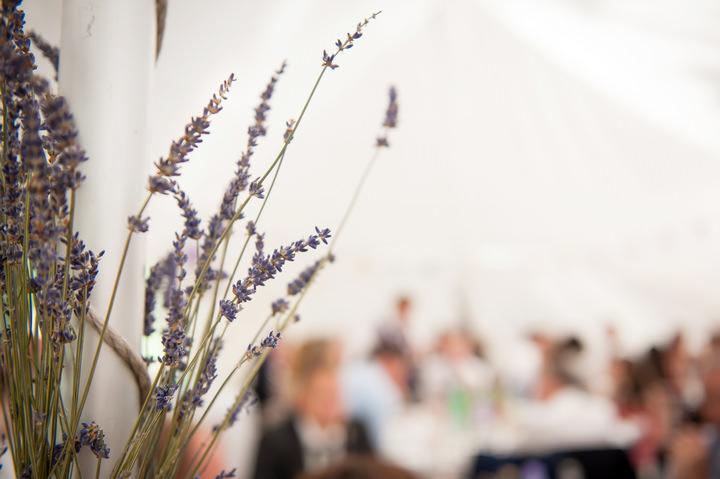 32 DIY Backyard Wedding by Mia Hooper