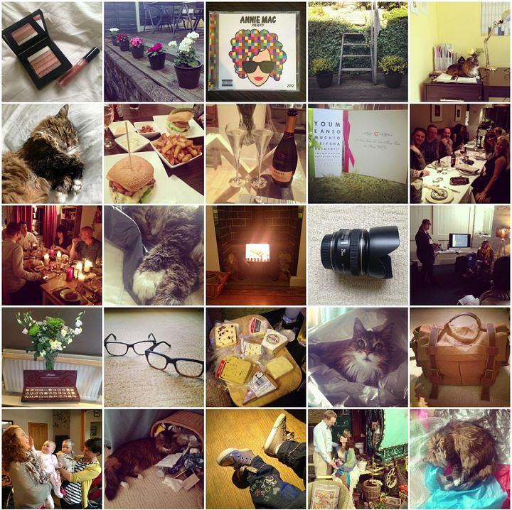 365 Happiness Project: 2013 A Year in Review