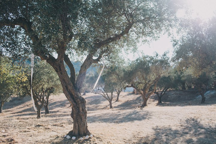 16 Olive Grove Greek Wedding By Robbins Photographic