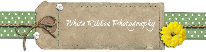 White Ribbon Photography