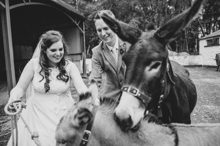 37 Animal Loving Informal Wedding By This Modern Love