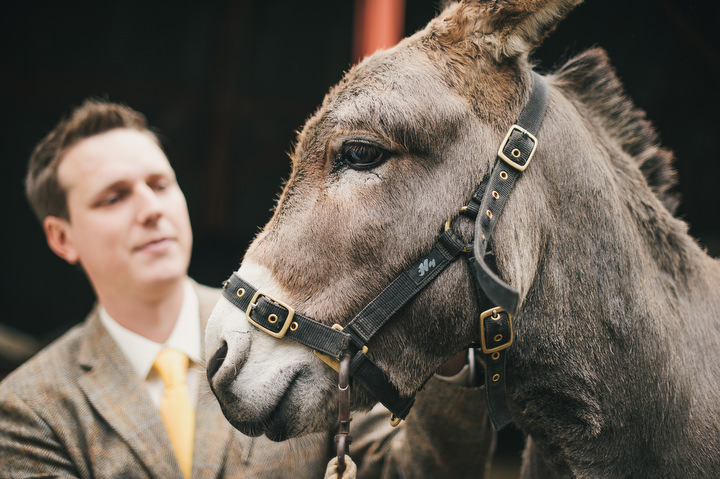 39 Animal Loving Informal Wedding By This Modern Love