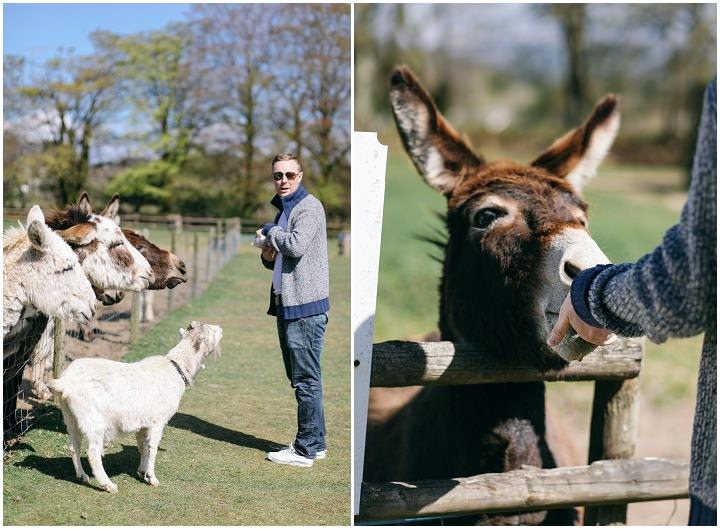 My Photography Diary: Donkey Sanctuary in Cornwall with Mum and Nik