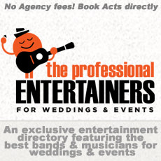 The Professional Entertainers