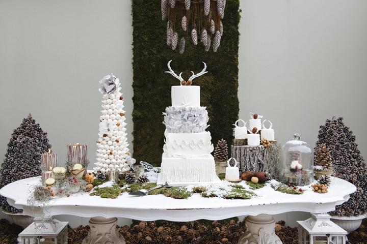1 Winter Cake Shoot - 'A Winter's Tale Of Love'