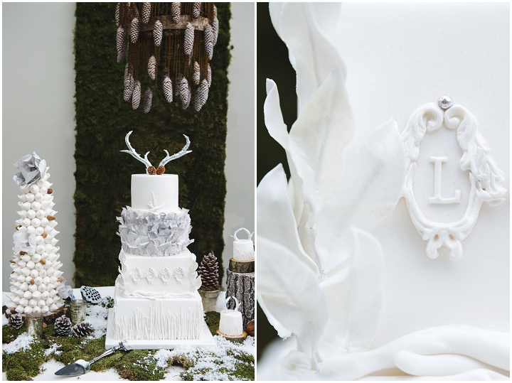 10 Winter Cake Shoot - 'A Winter's Tale Of Love'