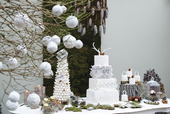 2 Winter Cake Shoot - 'A Winter's Tale Of Love'
