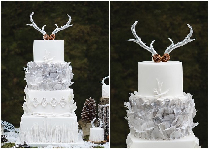 3 Winter Cake Shoot - 'A Winter's Tale Of Love'