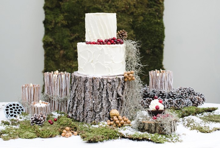 5 Winter Cake Shoot - 'A Winter's Tale Of Love'