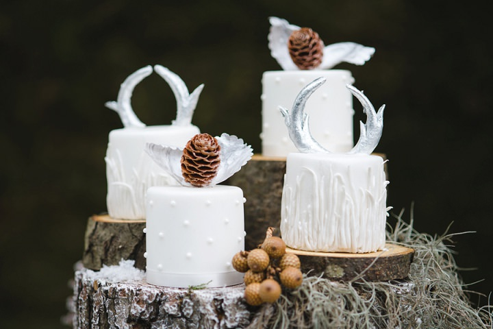 7 Winter Cake Shoot - 'A Winter's Tale Of Love'