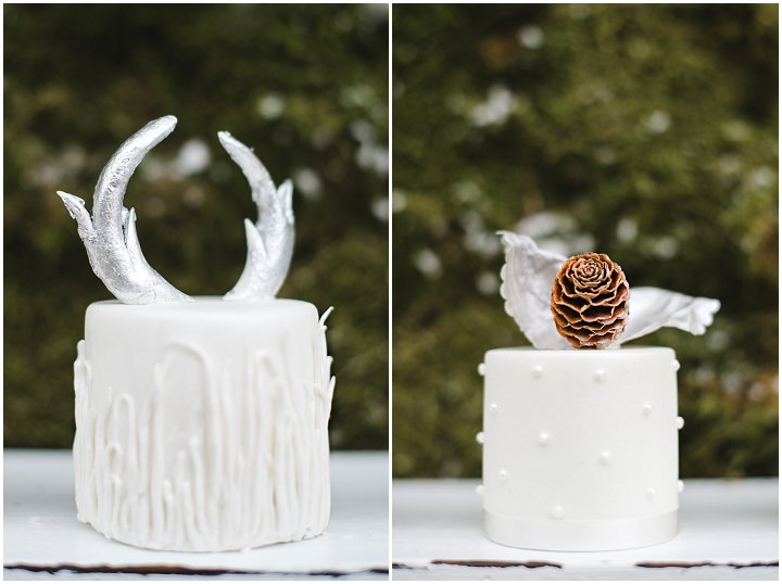 8 Winter Cake Shoot - 'A Winter's Tale Of Love'