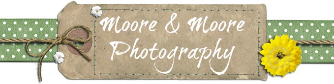 Moore & Moore Photography