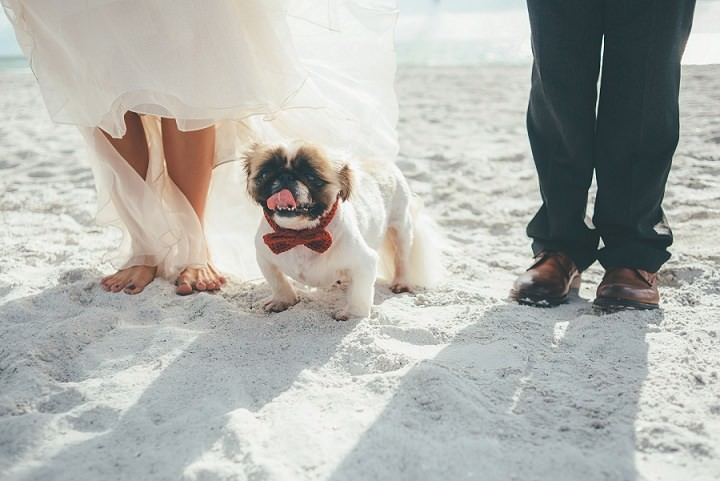 4 Beach to Brewery Wedding By Sadie and Kyle