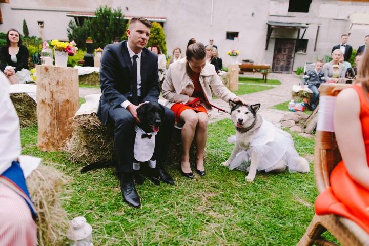 21 Colourful Polish Wedding By PNM Weddings