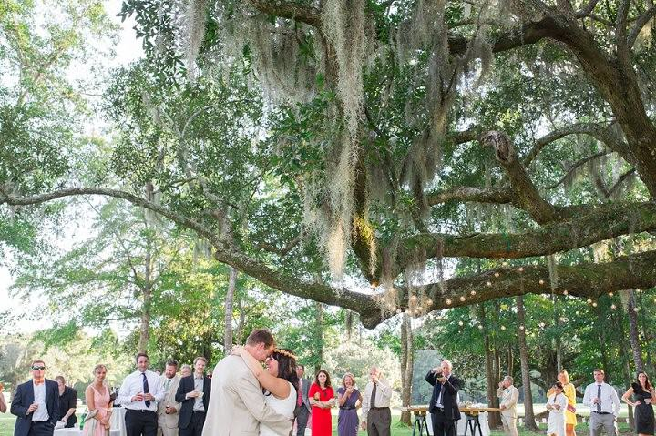 35 Pink and Gold Outdoor Wedding by Priscilla Thomas Photography