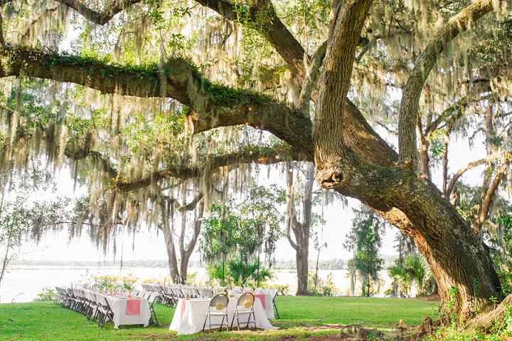 4 Pink and Gold Outdoor Wedding by Priscilla Thomas Photography