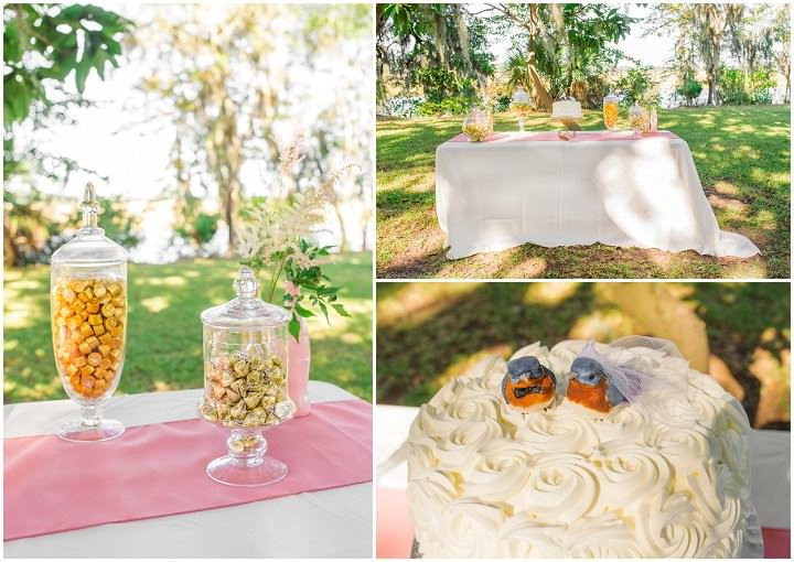 8 Pink and Gold Outdoor Wedding by Priscilla Thomas Photography