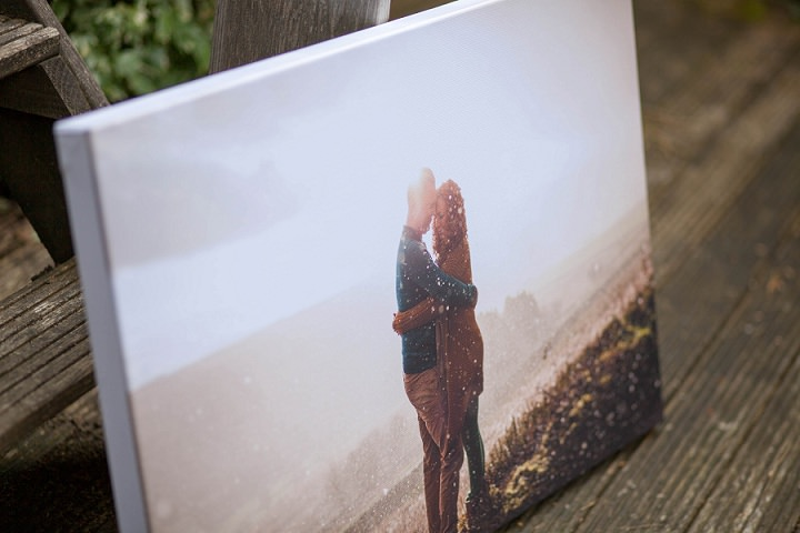 Image result for Parrot Print Canvas