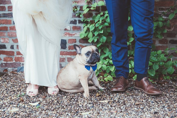 French Bulldog at Doddington Hall Lincolnshire Wedding By Phillipa James Photography