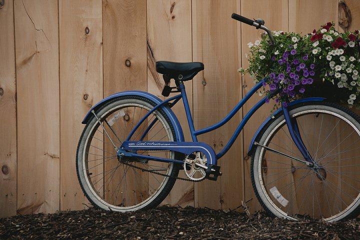 Bohemain Ontario bike Wedding By Sophia Lemon Photography