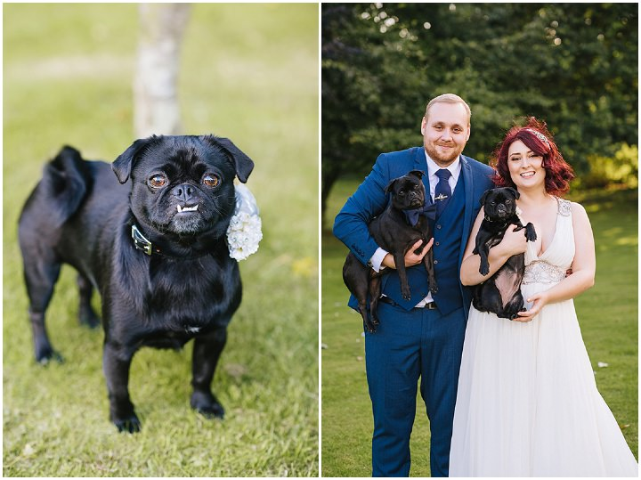 Louise and Sam's Gold and White Outdoors Wedding with an Evening Pool Party dogs at weddings