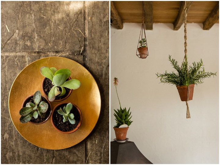 Outdoors In Anglesey Wedding succulents By Gill Jones Photography