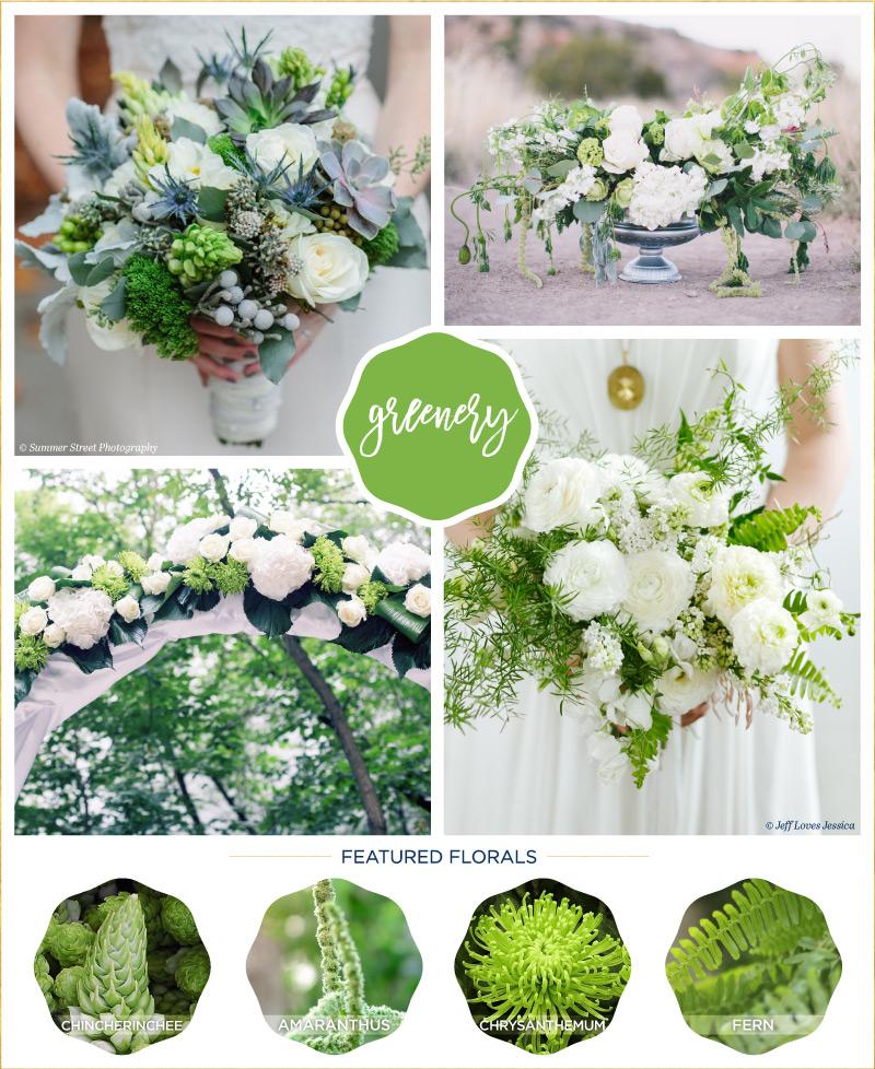 Floral Inspiration: Pantone's Spring Colour Report