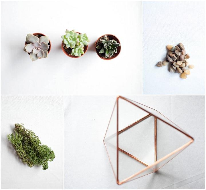 DIY Tutorial: How to Make a Terrarium Centerpiece