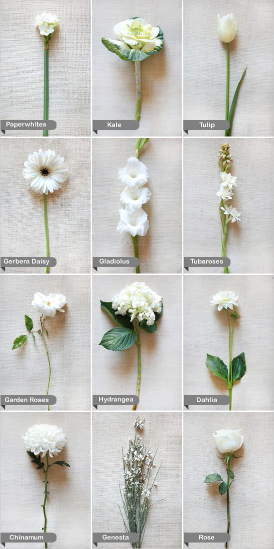 Boho Pins: Top 10 Pins of the Week – White Weddings