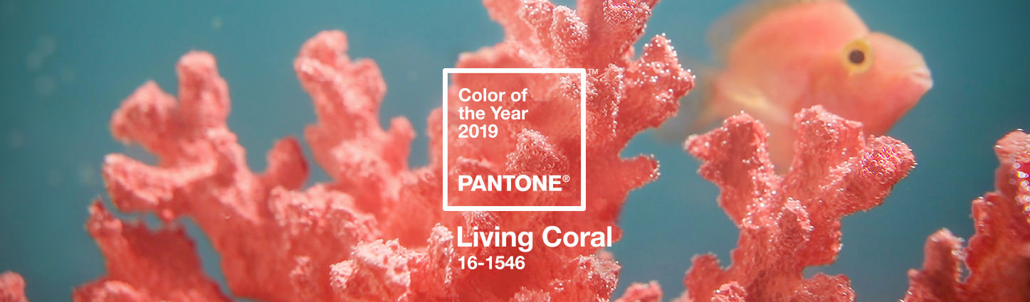 Boho Pins: Top 10 Pins of the Week – Living Coral Pantone Colour of the Year