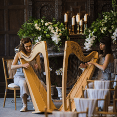 Boho Wedding Directory: This Weeks Awesome Suppliers – 25th October 2019